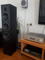 ELAC Debut F6 by Andrew Jones